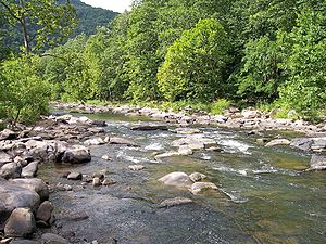 Bluestone River Pipestem.jpg
