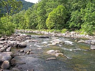 Bluestone River - Bluestone River in Pipestem Resort State Park