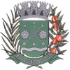 Coat of arms of Boa Esperança do Sul