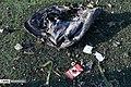 Boeing 737-800 crashed near Imam Khomeini international airport 2020-01-08 37.jpg