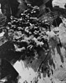 Bombing of the railway viaduct at Hoxel, Germany, 25 December 1944 (193771069).jpg