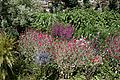 Border flowers and plants in Walled Garden of Parham House, West Sussex, England.jpg