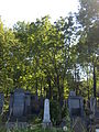 Boskovice-Jewish cemetery10.jpg