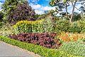Botanic Gardens In Glasnevin (Dublin) (7951834230).jpg