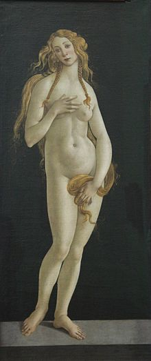 The Birth of Venus - Wikipedia