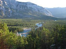Bow River 3.jpg