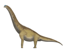 Wikipedia Wikiproject Dinosaurs Image Review Wikipedia