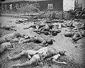 Brastagi. Bij hun aankomst in Brastagi deden onze troepen een lugubere vondst. I, Bestanddeelnr 344-1-2.jpg