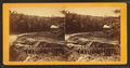 Brattleboro views. Repairing dam, from Robert N. Dennis collection of stereoscopic views.png