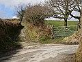 Bridleway - geograph.org.uk - 149135.jpg