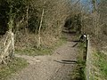 Bridleway at Thistle Hill - geograph.org.uk - 369321.jpg