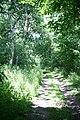 Bridleway leading to Barton Stud - geograph.org.uk - 22177.jpg