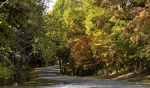 Top Five Scenic Drives in and Around Indy