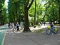Bucuresti, Romania. PARCUL HERASTRAU. Acum Parcul Regele Mihai I. Zi de recreere cu biciclete. (B-II-a-A-18802).jpg