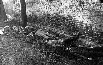 Insurgentes alvejados por corpos de voluntários