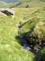 Burn draining Beinn Chorranach - geograph.org.uk - 1459464.jpg