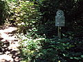 Burton Wood footpath 3.JPG