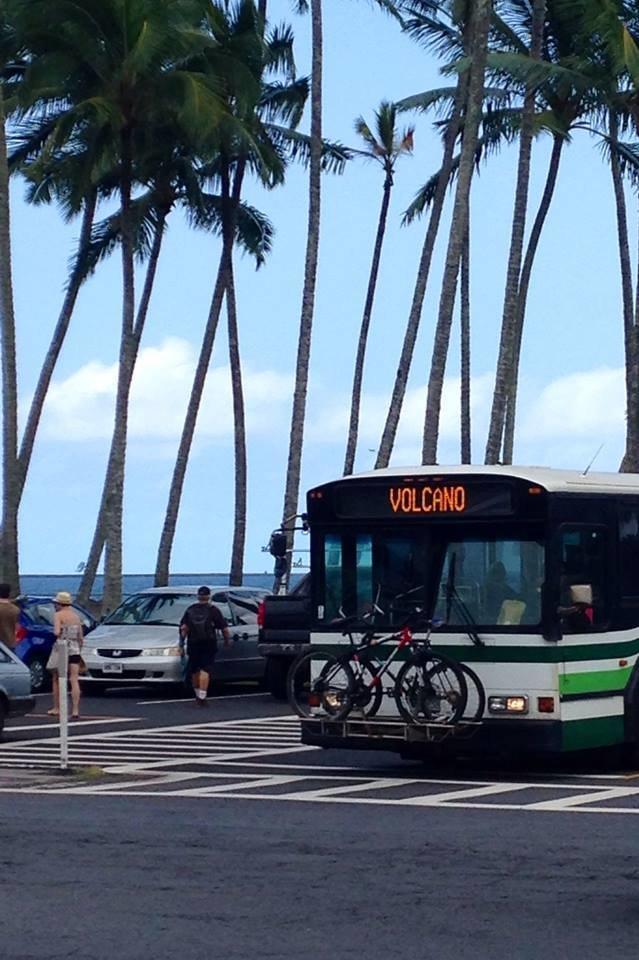 Bus in Hilo, Hawaii
