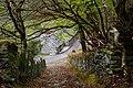 Byway to Bwlchgwernog, Nantmor, Gwynedd - geograph.org.uk - 1839734.jpg