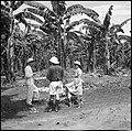CH-NB - Belgisch-Kongo, Thysville (Mbanza Ngungu)- Landschaft - Annemarie Schwarzenbach - SLA-Schwarzenbach-A-5-26-020.jpg