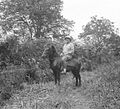 COLLECTIE TROPENMUSEUM De heer G.G. Slotemaker te paard tussen de gewassen Pteris en Olifantsgras op een onderneming te Redelong Atjeh Noord-Sumatra TMnr 10012153 (cropped).jpg