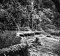 COLLECTIE TROPENMUSEUM Een door travertijnafzettingen gevormd waterbekken bij Blawan Ijen-plateau TMnr 10018364.jpg