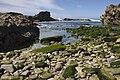Cabo Raso Praia de Seixos (Acesso ao mar).jpg