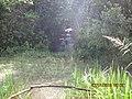 Cachoeira no Sitio Mafioletti - panoramio.jpg