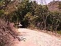 Camino A Las Huertas - panoramio.jpg