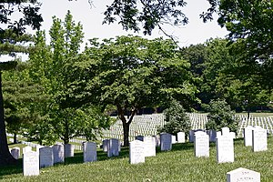 Camp Butler National Cemetery - Confederate graves