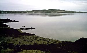 CanCat Beach Deer Island.jpg