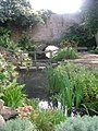 Canal Gardens - near Old Park Road Entrance - geograph.org.uk - 1440511.jpg