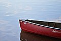 Canoe - Algonquin Provincial Park, Ontario.jpg