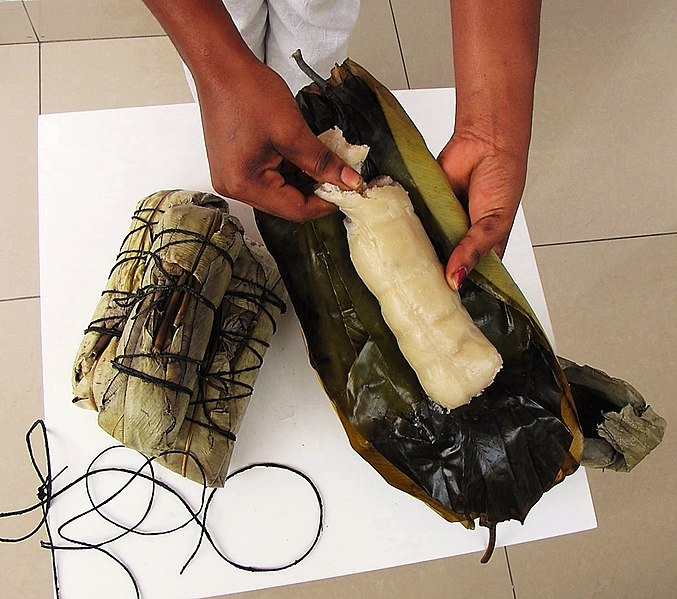 File:Cassava Bread - cassava cooked in leaf wrap (Kwanga, Chikwangue).jpg