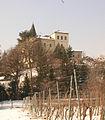 Castello duca abruzzi dett.jpg