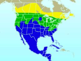 Cedar Waxwing-rangemap