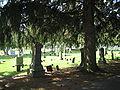 Cedarville Il Cedarville Cemetery1.JPG