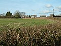 Chalbury Common, Dorset - geograph.org.uk - 110101.jpg