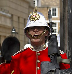 Changing of the Guard - Royal Gibraltar Regiment - commanding the Guard.jpg
