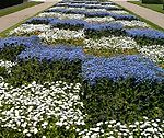 Checkered garden in Tours, France.jpg