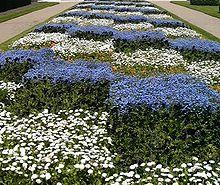 Checkered Garden In Tours, France