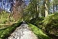 Chemin ombragé (28339220144).jpg