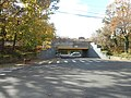 Chestnut Street under Hempstead Branch-1.jpg