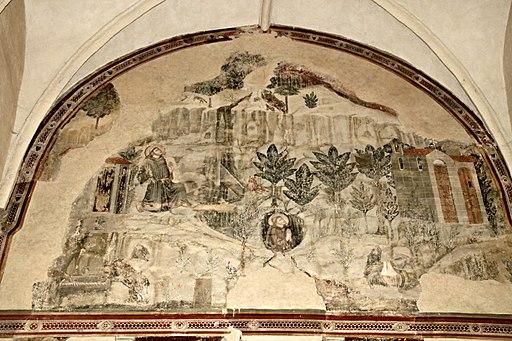 Frammenti delle storie di S. Francesco, affrescchi sulla navata sinistra in lato, chiesa San Francesco (Lucignano).