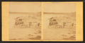 Children in goat cart on beach, from Robert N. Dennis collection of stereoscopic views 11.png