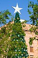 Christmas Tree and Star-03+ (299565665).jpg