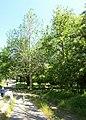 Circular-Park, Yerevan 06.jpg