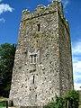 Clara Castle - geograph.org.uk - 494292.jpg