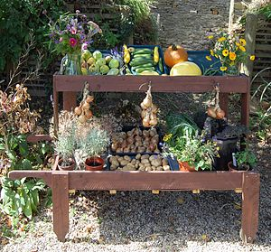 Cogges Manor Farm - Cogges Manor Farm – display of vegetables grown by volunteers