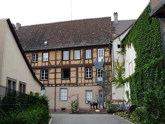 Музеи Кольмара, Colmar, Musée d'Histoires Naturelles et d'Ethnographie